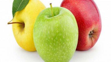 تصویر درخت های سیب در ایران