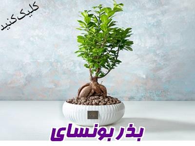 بانک بذر کمیاب در ایران