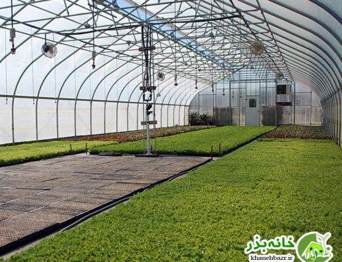 چگونه رویای ساخت گلخانه رو به حقیقت تبدیل کنیم؟